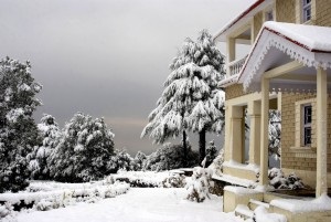 The Grand Oak Manor, Binsar Wildlife Sanctuary